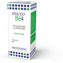 Micro B6